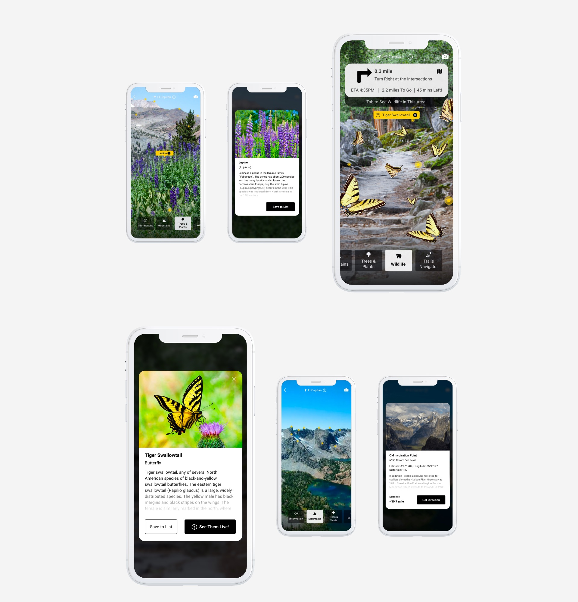 Augmented Reality Nature App 04